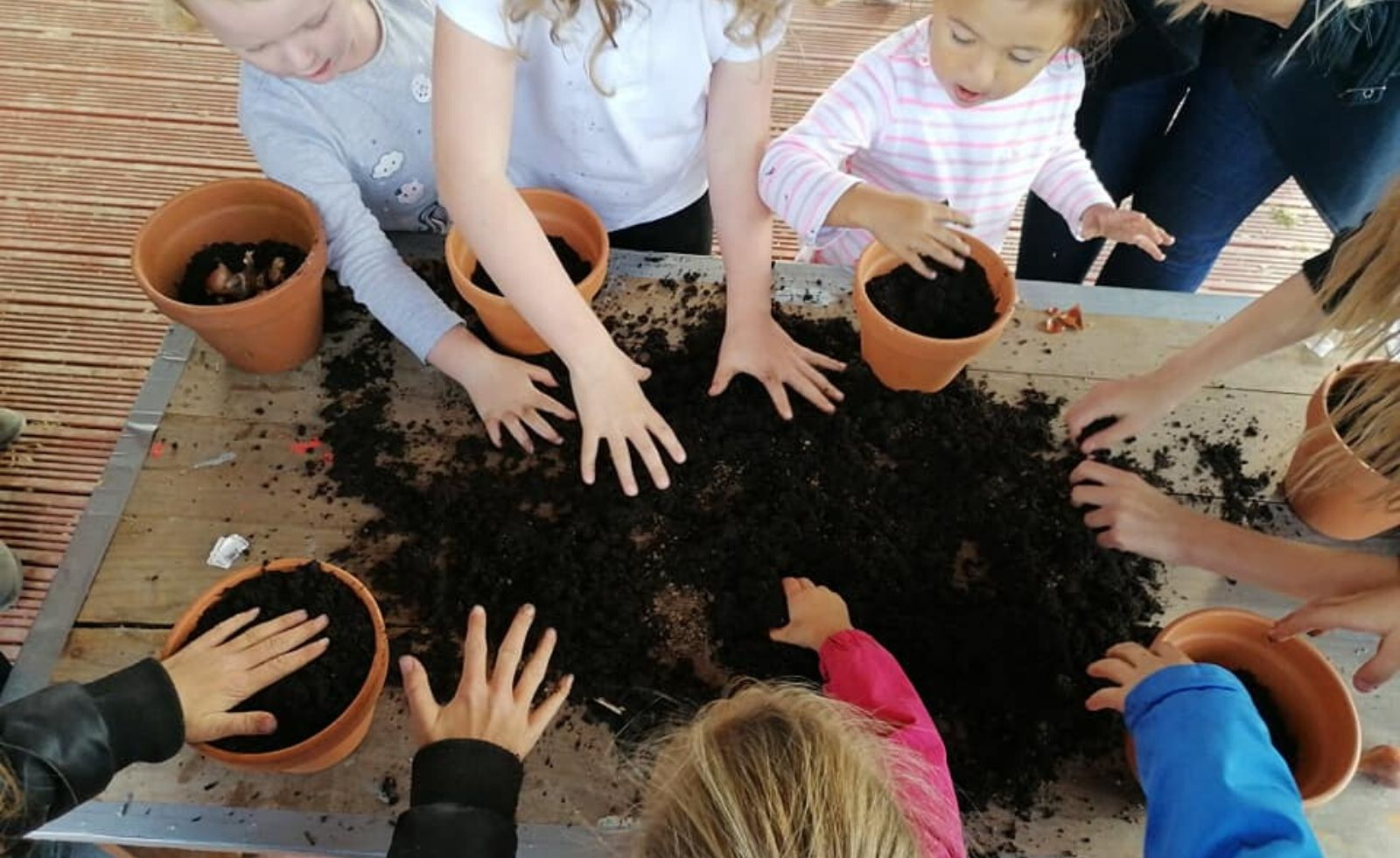 children's hands playing with soil